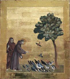 Giotto Saint François d'Assise